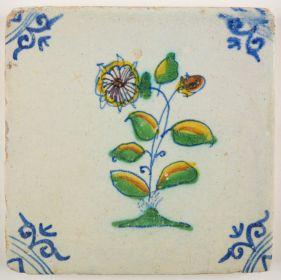 Geum, c. 1630