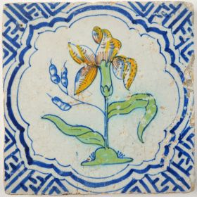 Antique Delft tile with an Iris in full bloom, 17th century