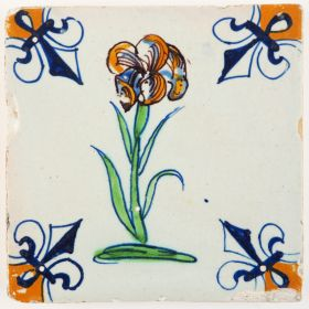 Antique Delft tile with a polychrome Iris flower, 17th century Gouda